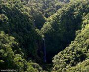 Isla del coco2