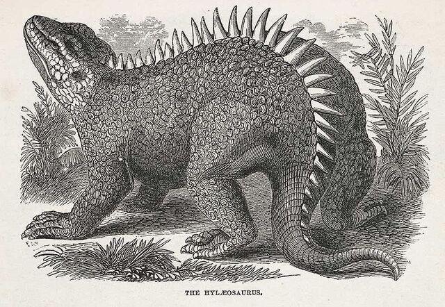 File:800px-Hylaeosaurus.jpg