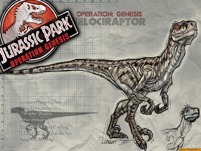 File:Velociraptor W.jpg