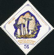 Mongolia 1964 Mushrooms a
