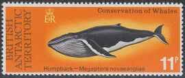 British Antarctic Territory 1977 Conservation of whales c