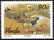 Venda 1992 Crocodile Farming c