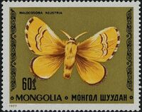 Mongolia 1977 Butterflies and Moths e