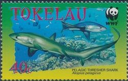 Tokelau 2002 WWF Pelagic Thresher Shark a
