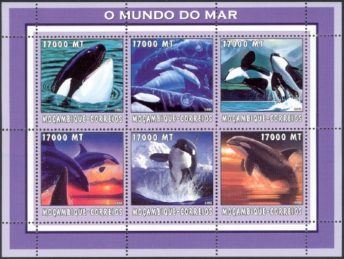 Mozambique 2002 The World of the Sea - Whales 1 h