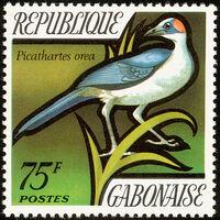 Gabon 1971 Birds d