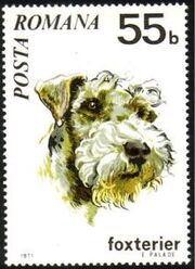 Romania 1971 Dogs c