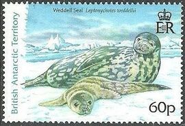 British Antarctic Territory 2006 Seals c