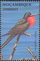 Mozambique 2002 Sea Birds of the World g