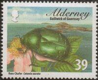 Alderney 2013 Alderney Beetles a