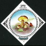 Mongolia 1985 Mushrooms g