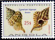 Angola 1974 Sea Shells p