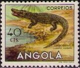 Angola 1953 Animals from Angola b