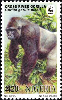 Nigeria 2008 WWF Cross River Gorilla a