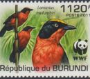 Burundi 2011 WWF Papyrus Gonolek