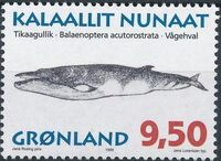 Greenland 1996 Whales f