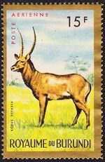 Burundi 1964 Animals e