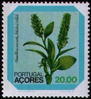 Azores 1981 Azores Flowers (1st Issue) c