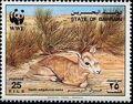 Bahrain 1993 WWF - Sand Gazelle a.jpg