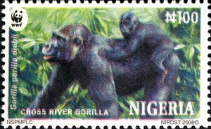 Nigeria 2008 WWF Cross River Gorilla c