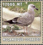 Mozambique 2002 The World of the Sea - Sea Birds 3 d