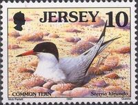 Jersey 1997 Seabirds and waders b
