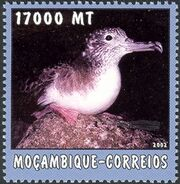 Mozambique 2002 The World of the Sea - Sea Birds 2 d
