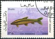 Afghanistan 1986 Fishes d