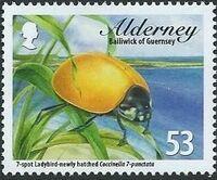 Alderney 2014 Alderney Ladybirds b