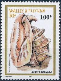 Wallis and Futuna 1999 Shells d