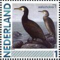 Netherlands 2011 Birds in Netherlands a1.jpg