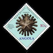Angola 1970 Fossils and Minerals from Angola l