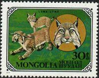 Mongolia 1979 Wild Cats b