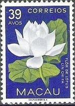 Macao 1953 Indigenous Flowers g