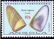 Angola 1974 Sea Shells 0