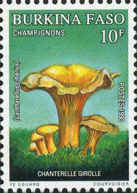 Burkina Faso 1990 Mushrooms a