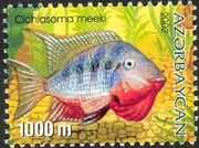 Azerbaijan 2002 Aquarian Fishes f