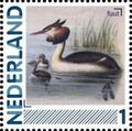 Netherlands 2011 Birds in Netherlands a12.jpg