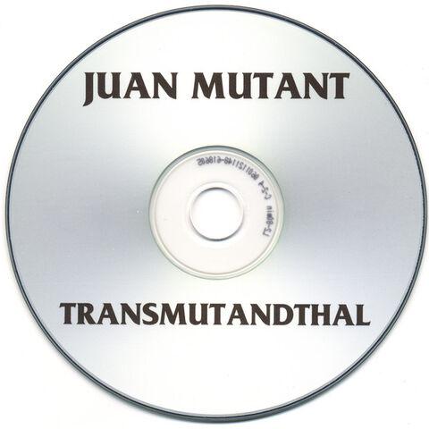 File:Trans CD.jpg