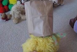Grouch vs. Fat-Bear Screenshot