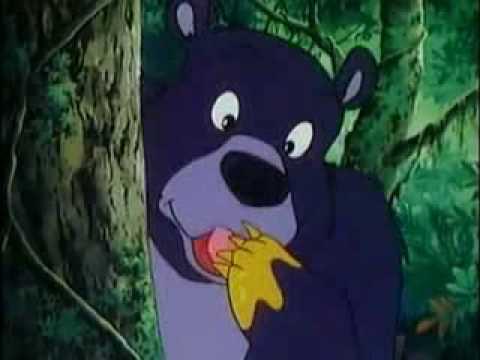 File:Baloo licking Honey on his Paw.jpg