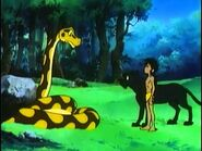 Mowgli, Bagheera and Kaa
