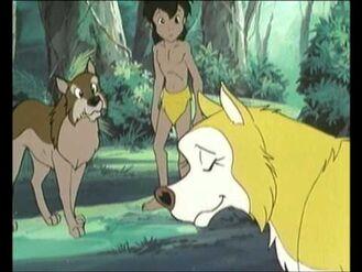 Mowgli, Akru and Maki