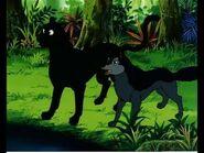 Alexander and Bagheera
