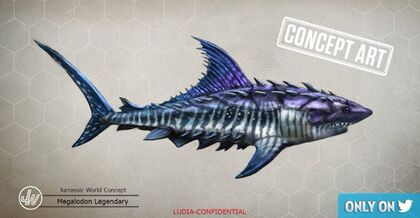Megalodon (29).jpg