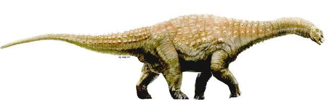 File:Diamantinasaurus.jpg