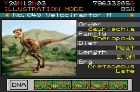 File:VelociraptorMalePBuilder.jpg