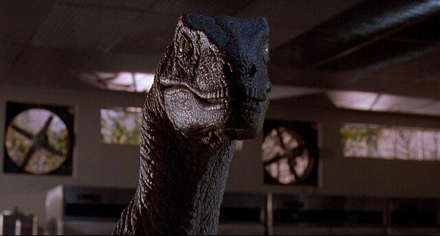 File:Velociraptor-03.jpg