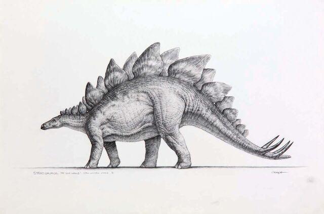 File:Stegosaurus concept art.jpg