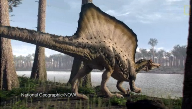 File:Real Spinosaurus.png